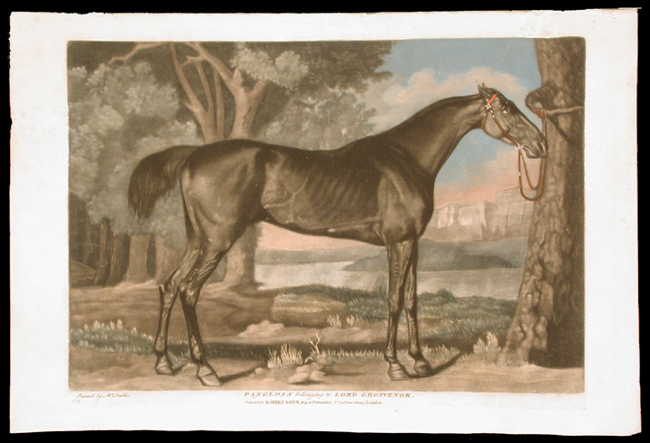 Pangloss belonging to Lord Grosvernor. George STUBBS, ANONYMOUS.