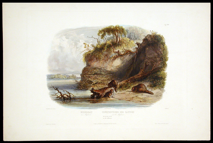 Beaver Hut on the Missouri. Karl BODMER.