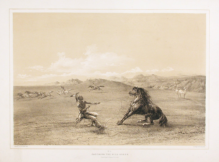 Catching the Wild Horse. George CATLIN.