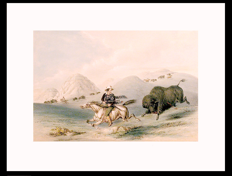 [Buffalo Hunt, Chasing Back]. George CATLIN.