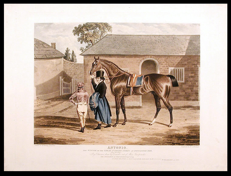 Antonio, the Winner of the Great St. Leger Stakes at Doncaster, 1819, (Fifty Subscribers.) By Octavian, dam by Evander, out of Miss Gunpowder. The Property of Thos. Ferguson, Esq. To whom this Print is most respectfully dedicated by the Publishers. After John Frederick HERRING.