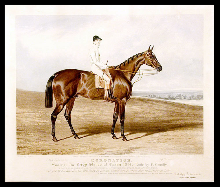 Coronation, Winner of The Derby Stakes at Epsom 1841, (Rode by P. Conolly.) A bay horse, bred by and the property of A. Rawlinson, Esq. of Chadlington, Oxon. was got by Sir Hercules, his dam Ruby by Rubens, Grand-dam Revenge's dam, by Williamson's Ditto: To whom this print is with permission, most respectfully inscribed, by his very obedient servant, Rudolph Ackermann. After Charles HANCOCK.