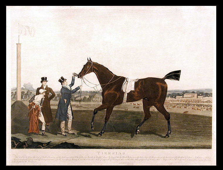 Tiresias Was bred by His Grace the Duke of Portland in 1816 was got by Soothsayer out of Sledge... At Epsom he won the Derby Stakes beating 15 others among whom were Sultan, Euphrates, The Dominic, &c. James POLLARD.