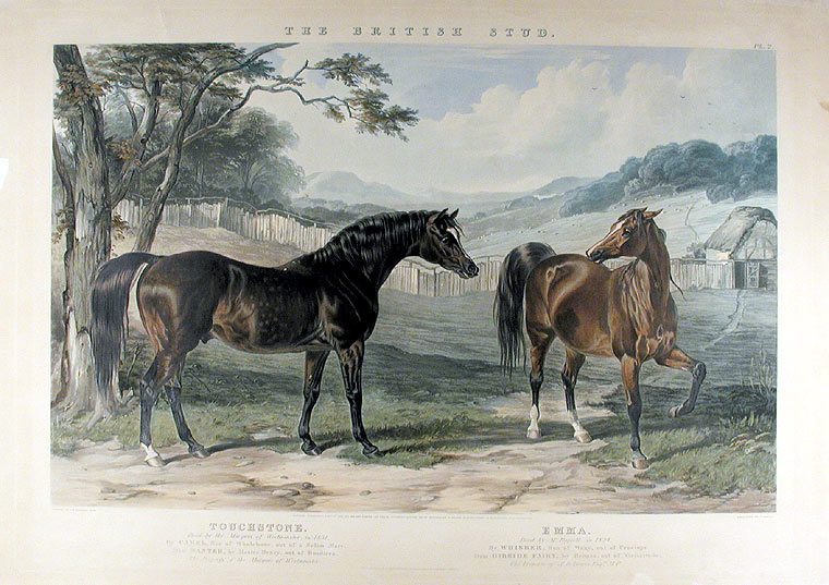Touchstone Bred by the Marquis of Westminster, in 1831... Emma. Bred by Mr. Russell, in 1824. After John Frederick HERRING.