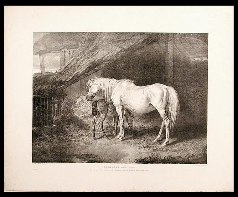Primrose and Foal. James WARD.