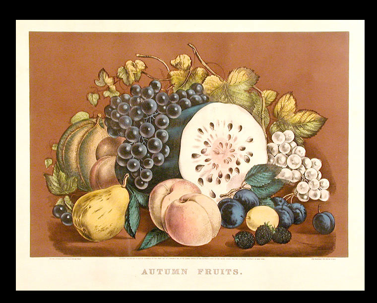 Autumn Fruits. CURRIER, IVES, publishers.