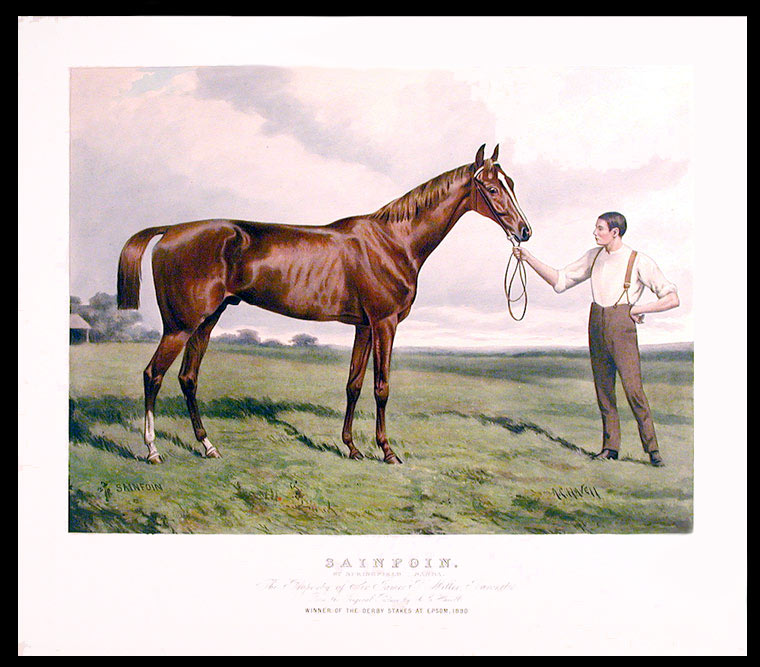 Sainfoin. By Springfield - Sanda. The Property of Sir James P. Miller, Baronet. From the Original Picture by A.C. Havell. Winner of the Derby Stakes at Epsom, 1890. After Alfred Charles HAVELL.