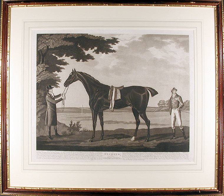 Diamond. Was bred by F. Dawson Esqr. of Newmarket, he was got by Highflyer. Dam by Matchem... he is now in Training and is the Property of Joseph Cookson Esqr. After John Nost SARTORIUS.