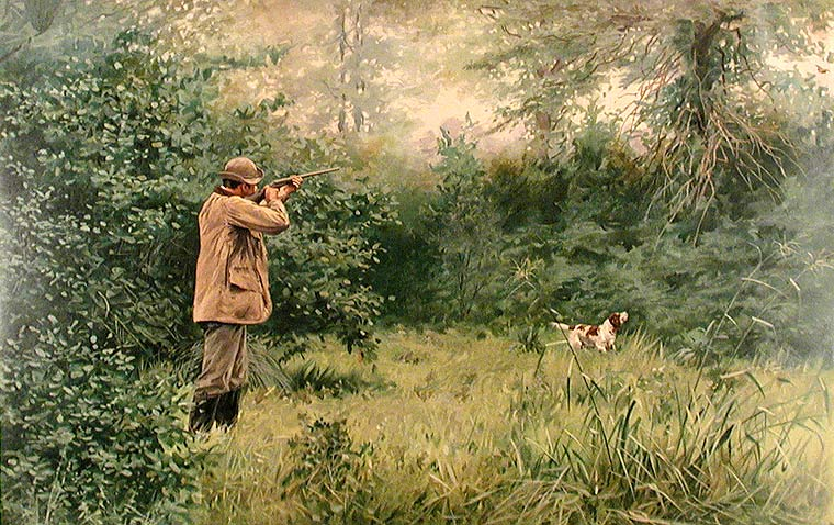 Summer Woodcock. Arthur Burdett FROST.