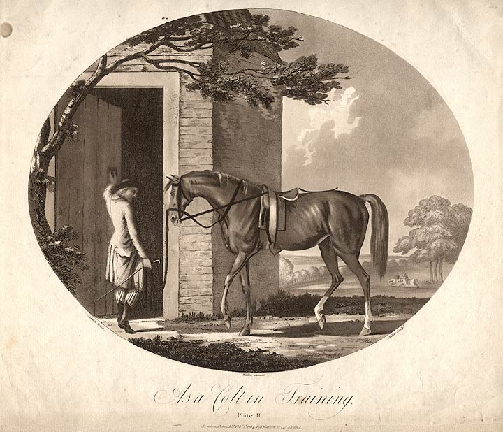 As a Colt in Training. Francis JUKES, after Charles ANSELL, b. 1752.