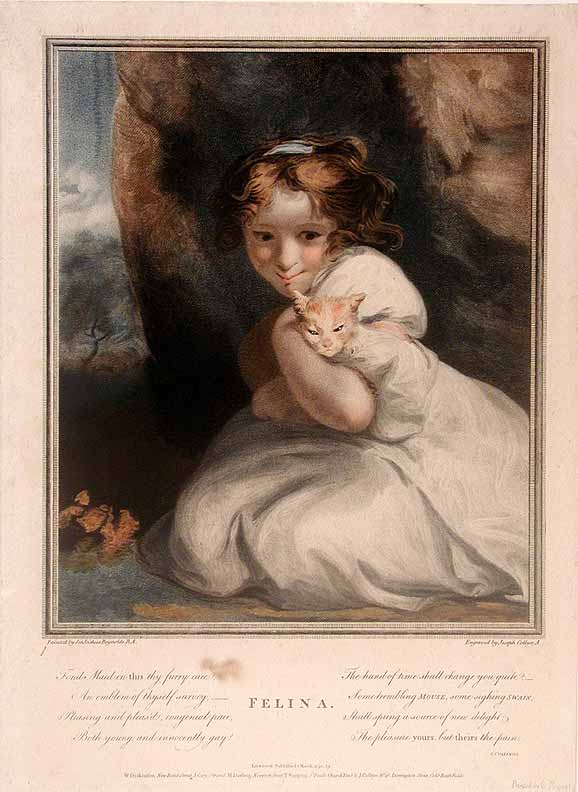 Felina. Sir Joshua REYNOLDS, Joseph COLLYER.