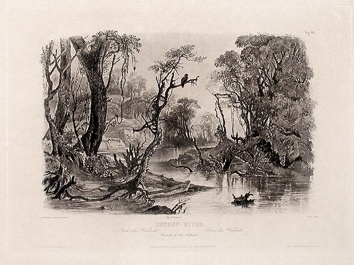 Cutoff-River. Branch of the Wabash. Karl BODMER.