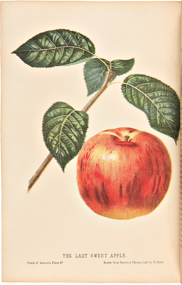 The Fruits of America, containing richly colored figures, and full descriptions of all the choicest varieties cultivated in the United States. Charles Mason HOVEY.