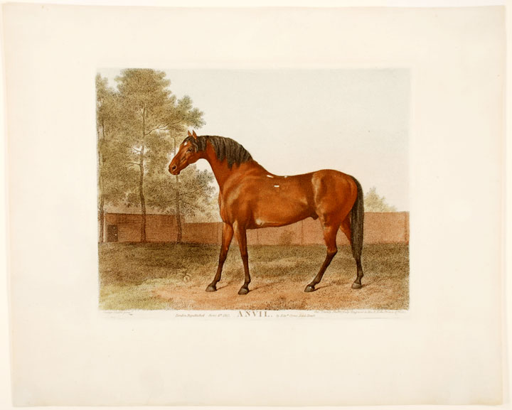 Anvil. George STUBBS, George Townly STUBBS.