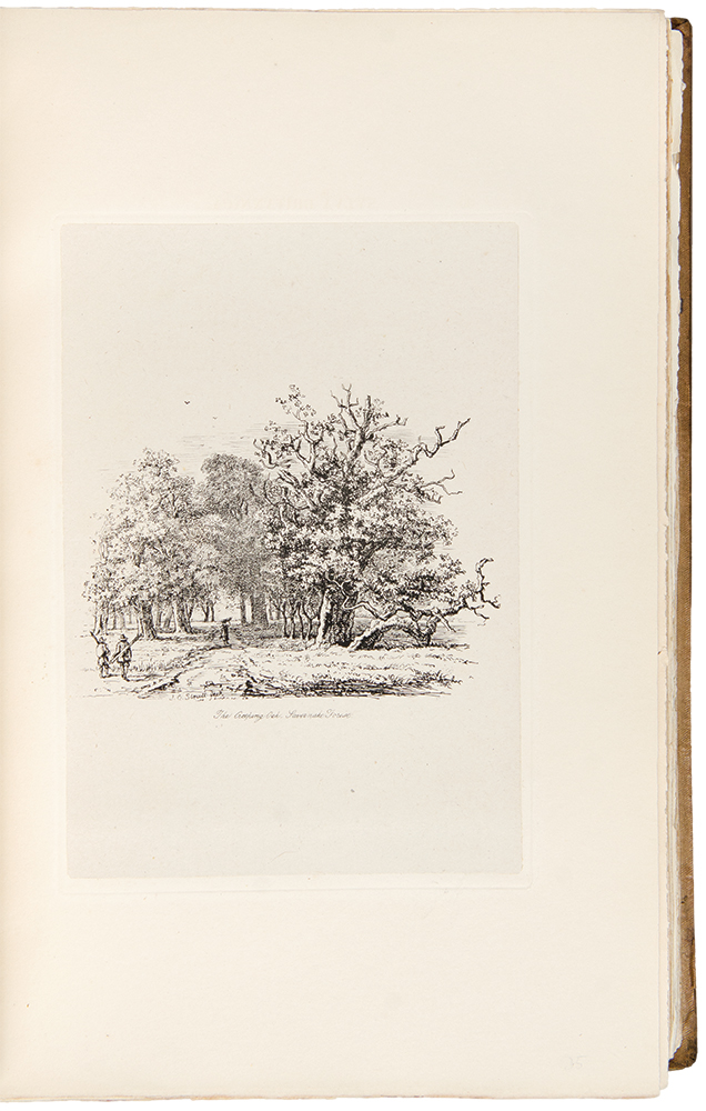 Sylva Britannica; or, portraits of forest trees, distinguished for their antiquity, magnitude, or beauty. Drawn from nature. Jacob George STRUTT.