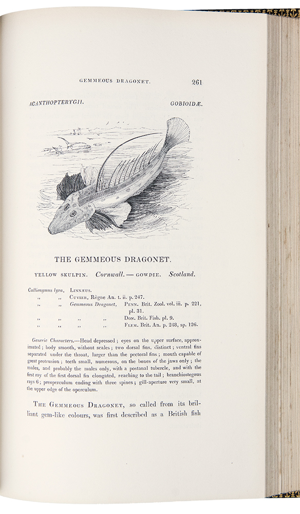 A History of British Fishes ... illustrated by nearly 400 woodcuts ... [Bound with:] Supplement to the History of British Fishes ... in two parts. William YARRELL.
