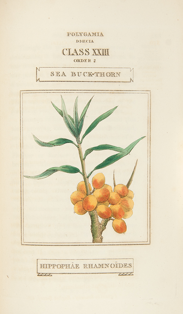 The Classes and Orders of the Linnaean System of Botany. Illustrated by Select Specimens of Foreign and Indigenous Plants. Richard DUPPA.
