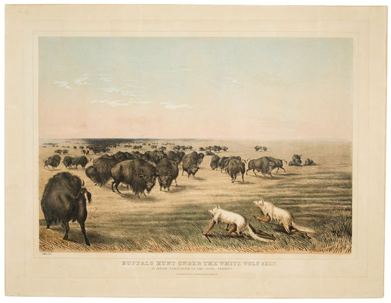 Buffalo Hunt under the White Wolf Skin. An Indian Stratagem on the Level Prairies. George CATLIN.