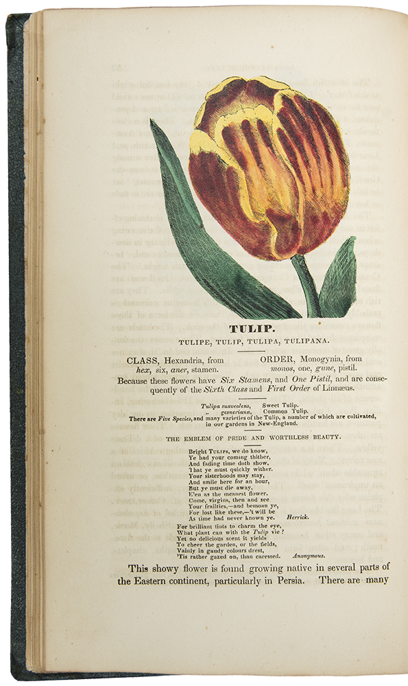 Flores Poetici. The Florist's Manual: designed as an introduction to vegetable physiology and systematic botany fo cultivators of flowers. Hermon BOURNE.