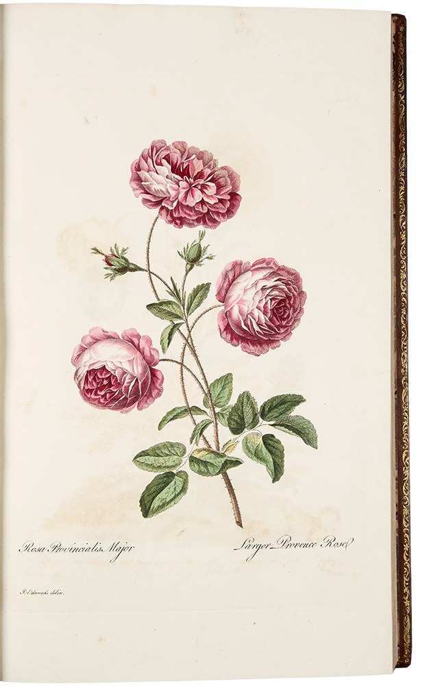 A Select Collection of One Hundred Plates, consisting of the most Beautiful Exotic and British Flowers. John EDWARDS, 1742- after 1812.