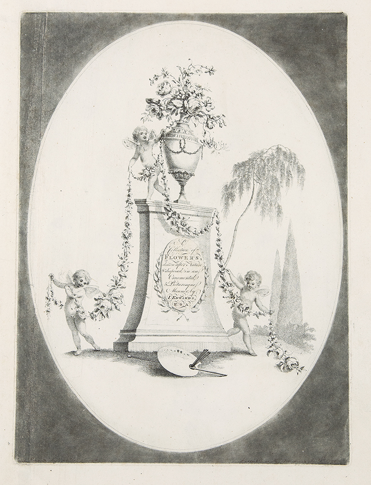 A Collection of Flowers drawn after Nature, & disposed in an Ornamental & Picturesque Manner. John EDWARDS.