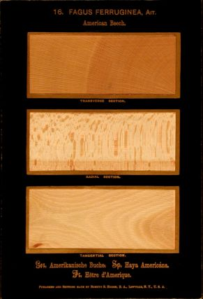 The American Woods, exhibited by actual specimens and with copious explanatory text. Romeyn Beck...