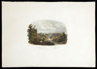 Forest Scene on the Tobihanna; Alleghany Mountains. Karl BODMER