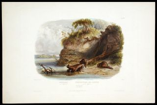 Beaver Hut on the Missouri. Karl BODMER