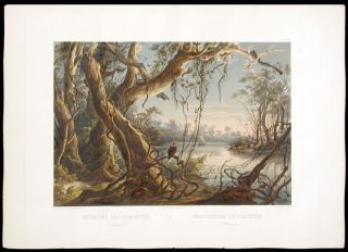 Mouth of the Fox River (Indiana). Karl BODMER
