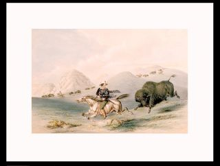 Buffalo Hunt, Chasing Back]. George CATLIN
