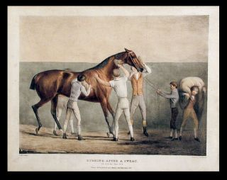 Life of the Race Horse: Watering [No. 5]; Sweating [No. 7]; Rubbing, after a sweat [No. 8]; Feeding [No. 9]