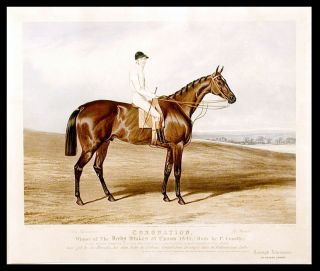 Coronation, Winner of The Derby Stakes at Epsom 1841, (Rode by P. Conolly.) A bay horse, bred by...