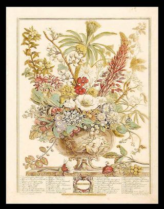 December. Robert - After Pieter CASTEELS FURBER, publisher