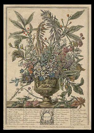 January. Robert - After Pieter CASTEELS FURBER, publisher