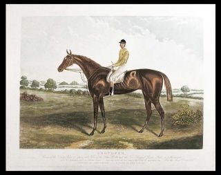 Shotover, Winner of the Derby Stakes at Epsom 1882, Value of the Stakes £4800 and the Two...
