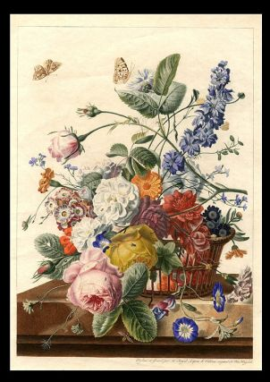 Flower-piece: flowers in a basket on a mantle, with butterflies and other insects]. Antoine...