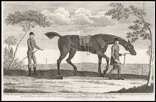 (Othello when the Property of Mr. Routh) Now Black & all Black the Property of Sr. Ralph Gore Bart. He beat Bajezet a Horse belonging to the Earl of March for 1000 Guineas on the Curragh of Keldare in the Kingdom of Ireland the 5th. of September 1751