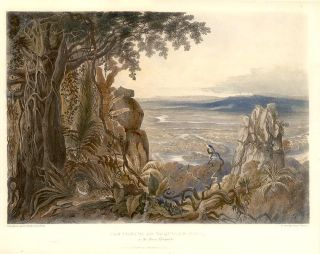 The Comuti or Taqulare Rock, on the River Efsequibo. Sir Robert Herman SCHOMBURGK
