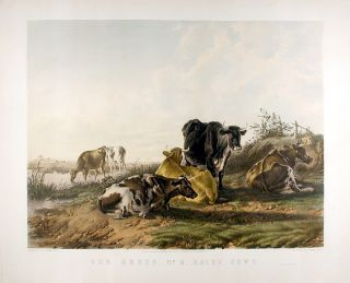 Our Herds, No. 4, Dairy Cow. Thomas Sidney COOPER, J. West GILES, lithographer