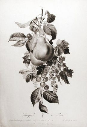 Grouppe de Fruits. Pierre François LE GRAND
