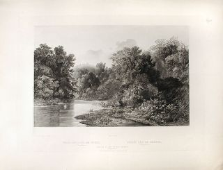 Forest Scene on the Lehigh (Pennsylvania). Karl BODMER