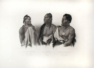 Oto Indian / Missouri Indian / Chief of the Puncas. Karl BODMER