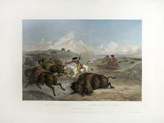 Indians Hunting the Bison. Karl BODMER
