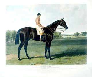Coronation, the Winner of the Derby Stakes, at Epsom, 1841. John Frederick HERRING, Charles HUNT