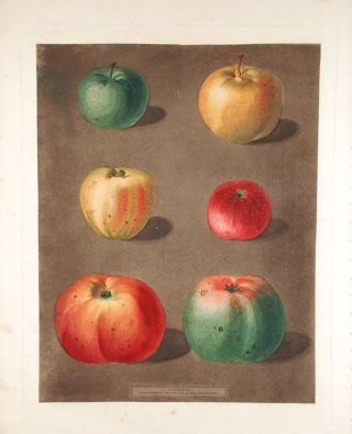 Apples] French Crab; Minshall Crab; Cockage Apple; Red Streack; Holland Burry; New Town Pippin....
