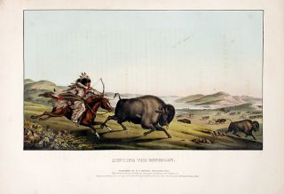 Hunting the Buffaloe. Thomas L. MCKENNEY, James HALL