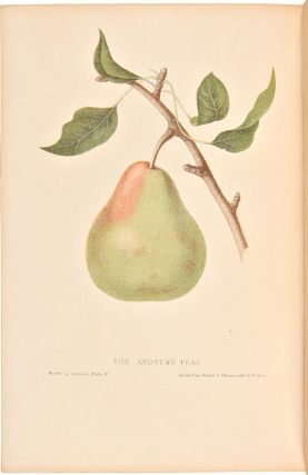 The Fruits of America, containing richly colored figures, and full descriptions of all the choicest varieties cultivated in the United States