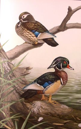Some Birds and Mammals of North America ... text by Les Line