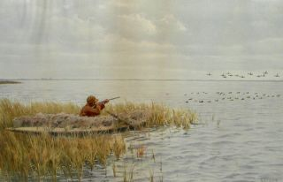 Ducks from a Blind. Arthur Burdett FROST