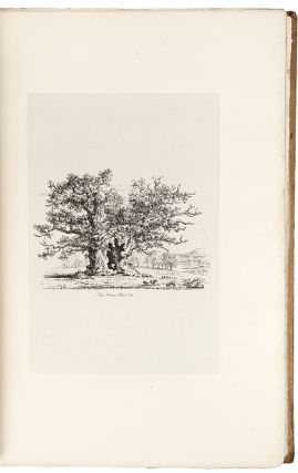 Sylva Britannica; or, portraits of forest trees, distinguished for their antiquity, magnitude, or beauty. Drawn from nature